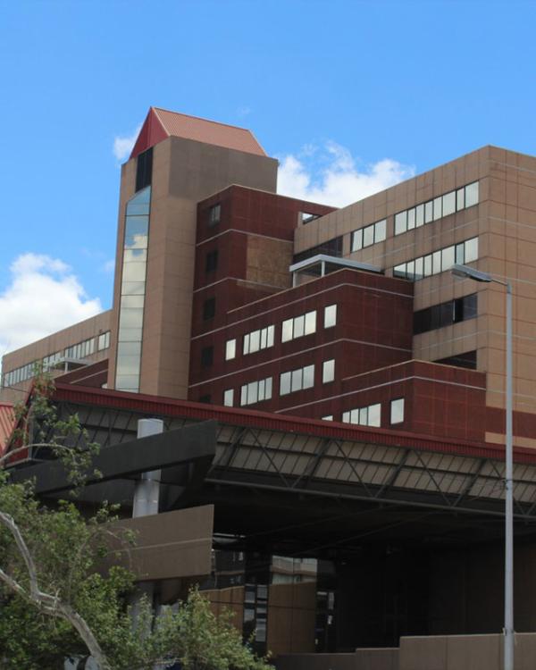 P34---Sancardia-(Pretoria)